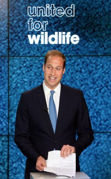 The Duke supports the conservation of endangered species. Picture by Stephen Lock / i-Images